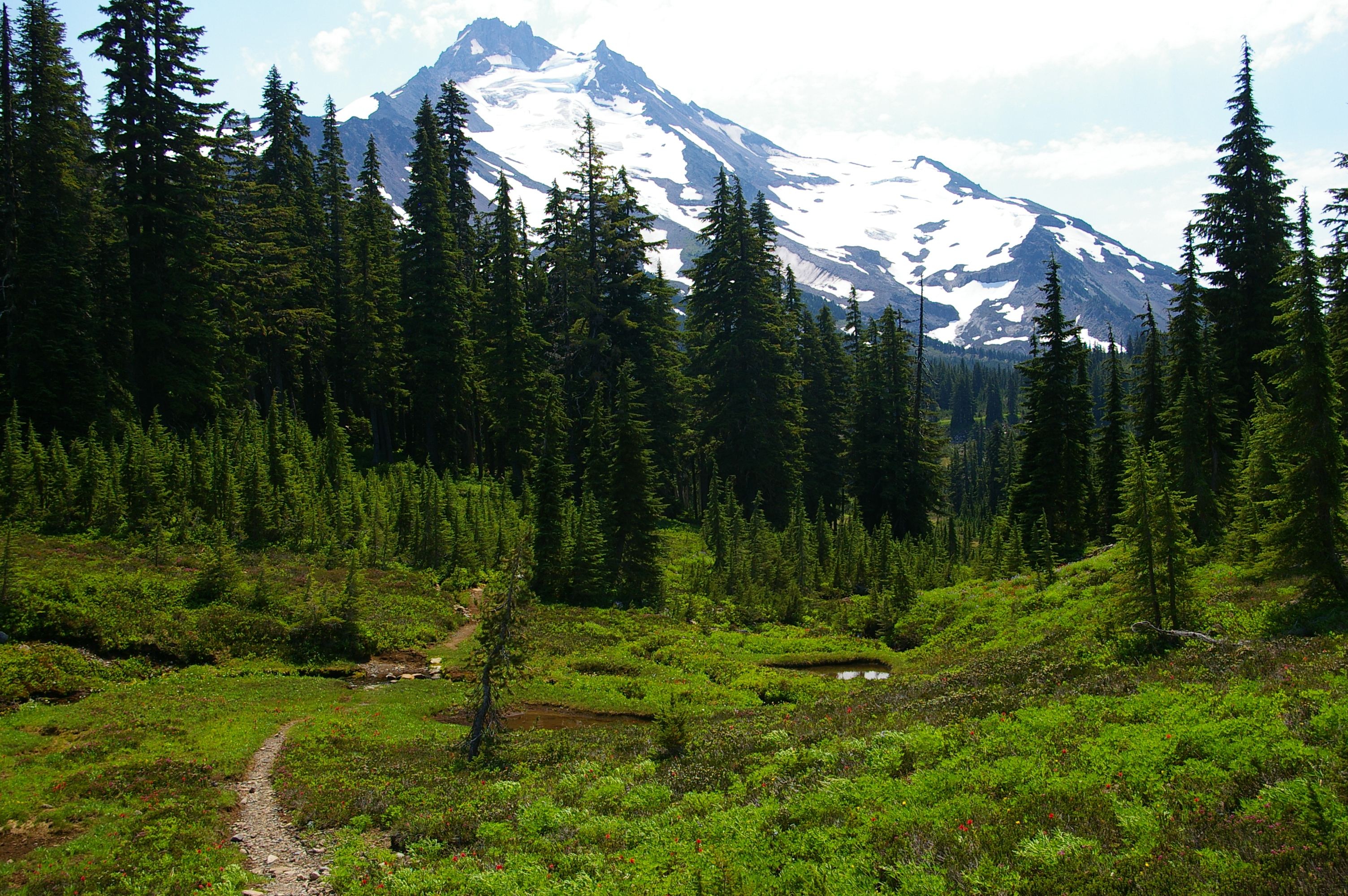 Mount Jefferson Wilderness 7
